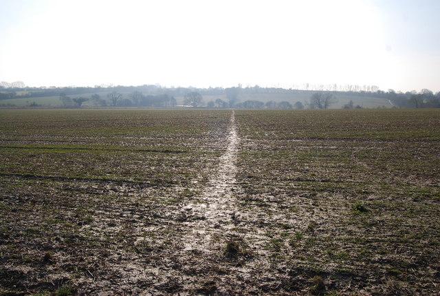 footpath_across_a_muddy_field_-_geograph-org-uk_-_1142947